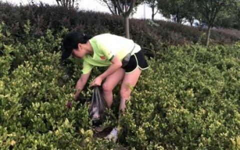 罗田跑团周末争做环保卫士