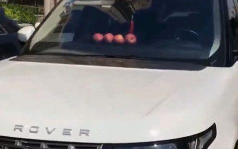 车里面放苹果是什么意思 车里面放四个苹果是什么意思