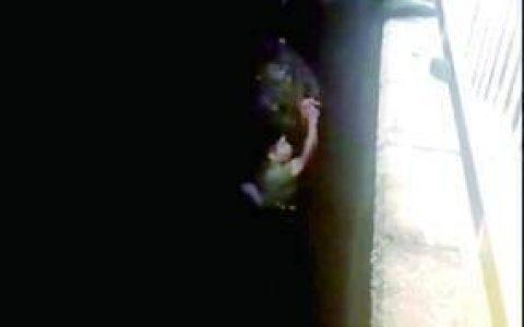 女子跳河武警战士出手相救 救人一刻忘记水性不好