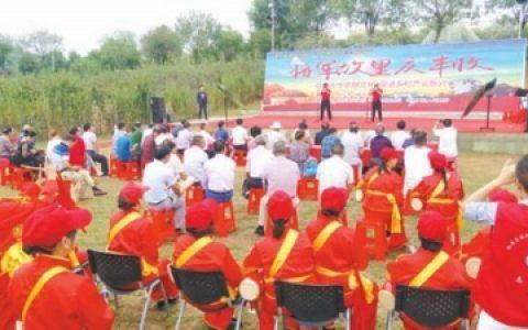 红安县举行首届农民丰收节