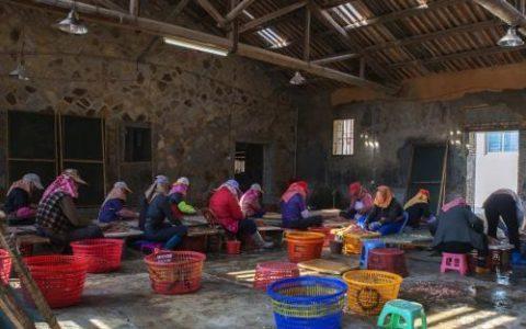 农村闲人很多,也有场地,哪里有适合手工代加工的信息?