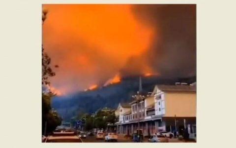 为什么西昌会发生森林大火?与去年成因一样吗?