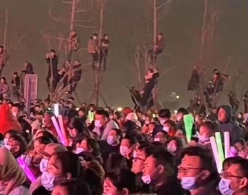 观众为看潘长江爬上树 树上哪哪都是人真顶流