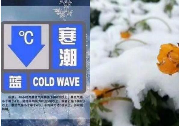 寒潮预警连发四天 哪些地区将会迎来大幅度降温