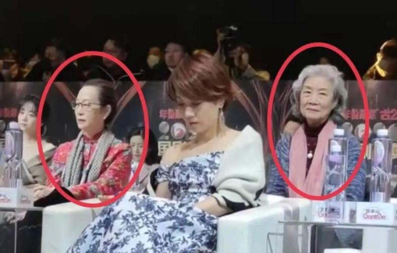 马伊琍陈数坐姿惹争议 网友:这种座位设计太差劲