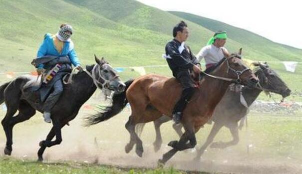 【问】骑马能跑多少公里?